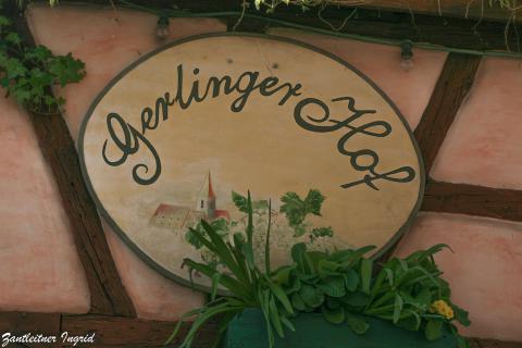 Gerlinger Hof, Frühshoppen
